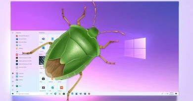A Windows 10 nem látja rendesen az internetet? Így segíthetünk rajta!