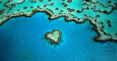 Súlyos a pusztulás az ausztrál Nagy-korallzátonynál