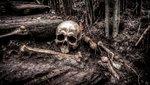 Végre kiderült: Szakértők szerint ez minden idők legfélelmetesebb horrorfilmje