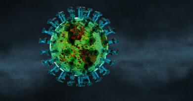 Koronavírus Magyarországon: megérkezett a hétfői jelentés, új rekordon a halálozás