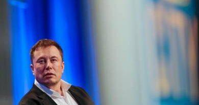 Elon Musk 100 millió dollárt ad annak, aki fülön csípi a széndioxidot