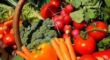 Egy kutatás szerint könnyebben törik el a csontja a vegetáriánusoknak