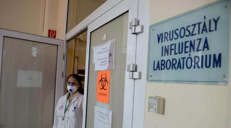 Néhány Budapest környéki településen emelkedik a koronavírus örökítőanyaga a szennyvízben