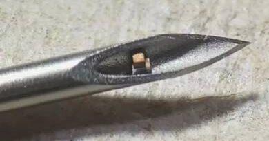 A világ legkisebb, egy chipből álló rendszere beültethető a szervezetbe