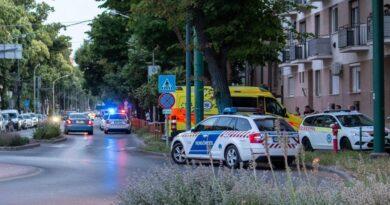 Napokkal a kettős gyilkosság előtt kapta meg a fegyvertartási engedélyét a szegedi gyógyszerész