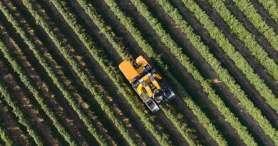 Megszületett az uniós agrármegállapodás